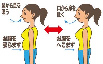 「腹式呼吸」の画像検索結果